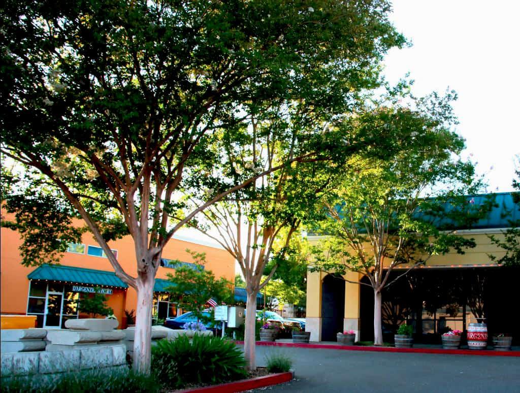 Sonoma County Event Venue